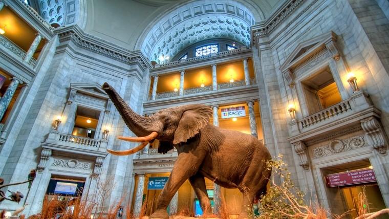 No es lo mismo, pero la tecnología permite apreciar aquellos cuadros casi como si estuviéramos en el museo.