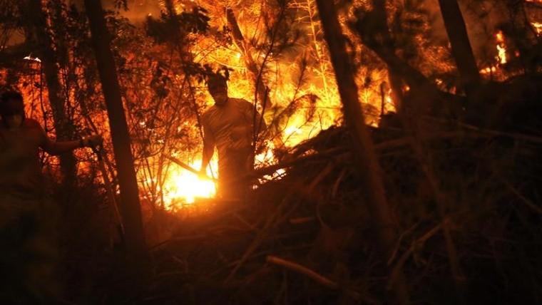 Aumentan víctimas por incendios en Chile
