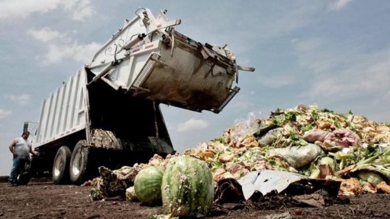 Las pérdidas de alimentos en Argentina se dan en las etapas de producción, procesamiento y logística.