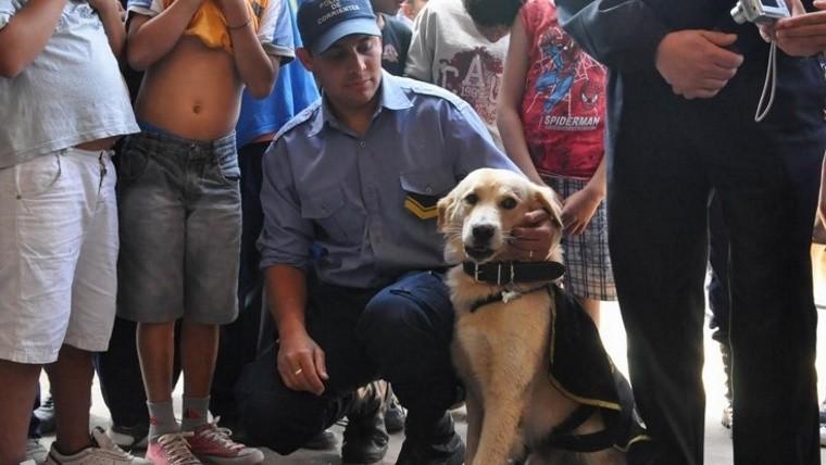 Perro policía mordió a una nena — Corrientes
