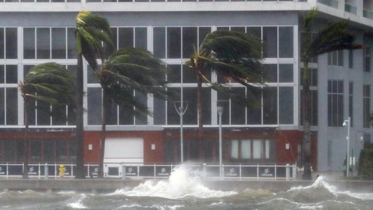 Saquearon las tiendas en medio del viento