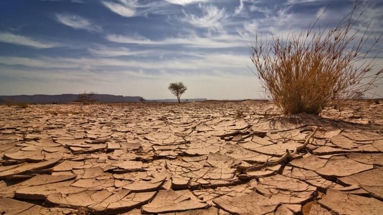 El cambio climático afecta la salud