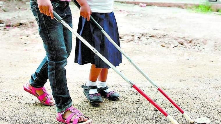 El bastón se considerará como elemento y/o instrumento de apoyo para las personas con esta discapacidad.