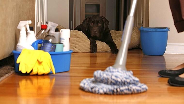 Los productos de limpieza son tan dañinos como 20 cigarros al día