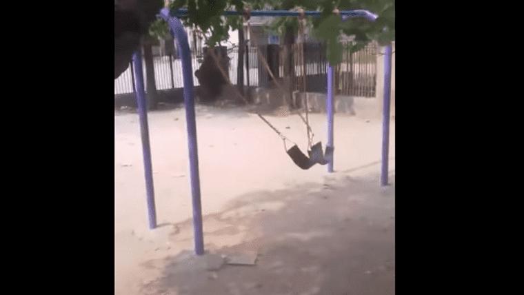 Este columpio fantasmal que se mueve sólo asusta a las redes