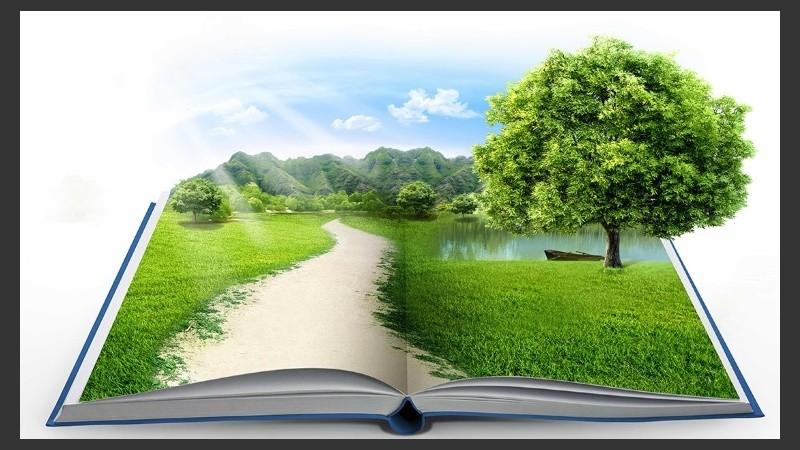 """Literatura: """"Problemas y desafíos de la educación"""