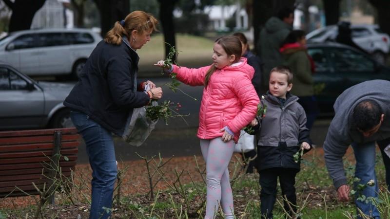 Grandes y chicos ayudaron a buscar esquejes de rosales.