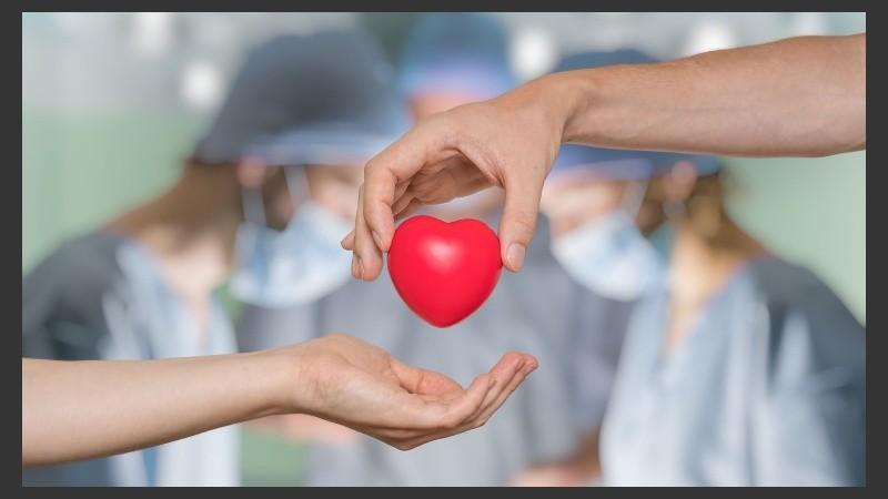 A partir de los procesos de donación realizados en noviembre se trasplantaron 23 personas en lista de espera.A partir de los procesos de donación realizados en noviembre se trasplantaron 23 personas en lista de espera.