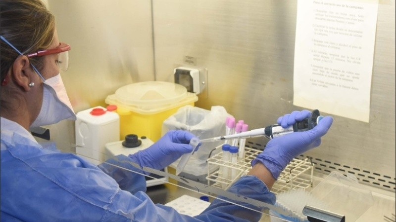 Nación indicó que aumentó el nivel de testeos diarios por coronavirus.