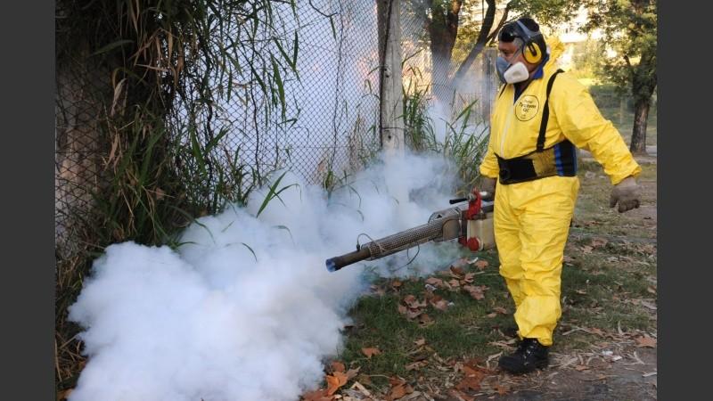 Los especialistas advierten que no hubo tareas de prevención en los últimos años.