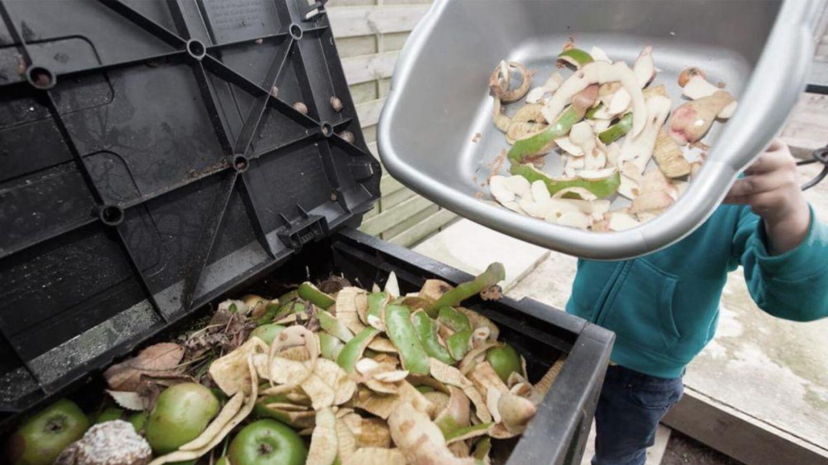Preocupación: aseguran que casi un 20% de los alimentos se desperdician en el mundo cada año | Rosario3