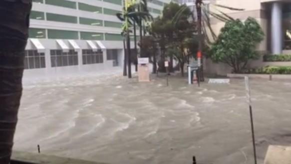 Se registraban 3 víctimas en Florida — Huracán Irma